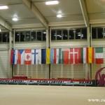 Zuberské gymnastky ve finále na Světovém poháru v Budapešti 2015 0012