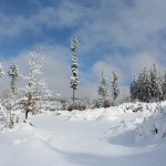 Zima pod Krátkou 1