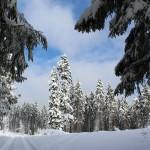 Zima pod Krátkou 2