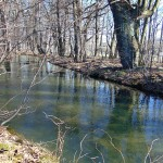 Náhon u Hamerského rybníka