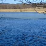 Tající led na rybníku
