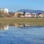 Zatopené pole u Hamerského rybníka
