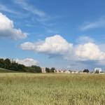 Pohled na sídliště z Hamer