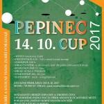 Pepinec 2017-01zoom